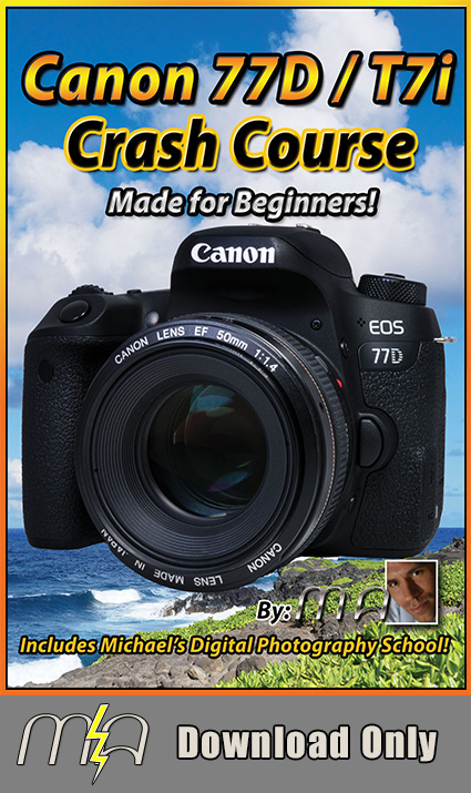 Canon 77D / T7i Crash Course Training Tutorial